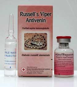 Anti Venin Vipère de Russell CROIX ROUGE CROISSANT ROUGE
